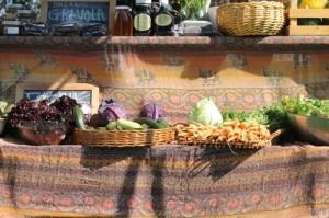 Gnar Foods